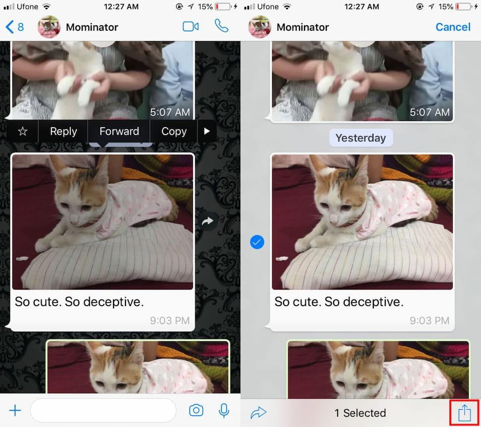 كيفية إعادة توجيه الصور مع الوصف على واتساب 2